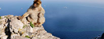 Gibraltar Holidays from Gatwick